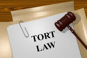 Best Tort Law Firm in Nepal